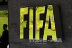 FIFA World Cup: Điều chỉnh thể thức và những điều bất cập
