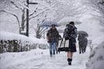 Nhật Bản lạnh nhất kể từ đầu Đông, 3 người tử vong