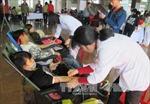 Nghỉ việc nương rẫy, đi hiến máu cứu người