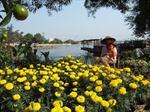 TP Hồ Chí Minh nhiều điểm vui chơi, giải trí trong dịp Tết