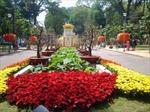 Phát wifi miễn phí tại các chợ và hội hoa Xuân