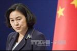 Trung Quốc sẵn sàng tăng cường hợp tác với Nga