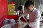 Giúp người dân vơi nỗi lo về ngộ độc thực phẩm