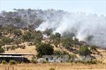 Cháy rừng, nắng nóng lan rộng tại Australia