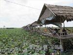 Phát triển mô hình nhà nông làm du lịch
