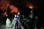 Đánh vật với 26 đám cháy rừng, Chile kêu gọi quốc tế giúp đỡ