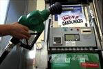Giá dầu tăng sẽ thúc đẩy lạm phát ở Eurozone trong hai năm tới