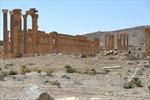 Phá hủy di tích cổ ở Palmyra, IS phạm 'tội ác chiến tranh'