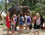 Đắk Lắk tập trung phát triển các sản phẩm du lịch mũi nhọn