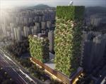 Trung Quốc trông cậy vào 'rừng thẳng đứng' giảm ô nhiễm