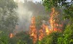 Cháy rừng trên đường lên chùa Tháp, phát hiện một thi thể nam giới