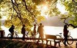 Ngày mai, Bắc Bộ nắng ấm, Nam Bộ có mưa rào và dông