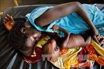 LHQ báo động tình trạng thiếu lương thực cho người tị nạn ở châu Phi