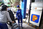 Giá nguyên, nhiên vật liệu nửa đầu tháng 2 ổn định