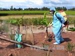 Triển khai tháng vệ sinh, tiêu độc khử trùng đợt 1 năm 2017