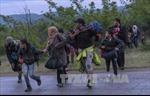 Hàng chục nghìn người tị nạn Syria từ Thổ Nhĩ Kỳ trở về nước