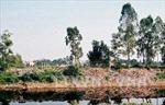 Nỗ lực cải thiện chất lượng nước sông Nhuệ, sông Đáy
