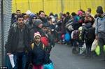 Hơn 3.500 vụ tấn công người tị nạn xảy ra ở Đức trong năm 2016