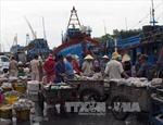 Bình Thuận kiến nghị không phát triển nghề giã cào