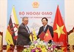 Tăng cường hợp tác toàn diện Việt Nam - Brunei
