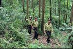 Phối hợp để quản lý bảo vệ rừng hiệu quả
