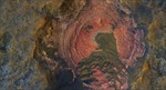 NASA công bố ảnh 'trái tim' Sao Hỏa