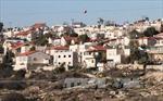 Cảnh sát Israel sơ tán 9 nhà định cư tại Bờ Tây