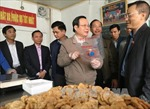 Giám sát thực hiện chính sách, pháp luật về an toàn thực phẩm tại Quảng Ninh