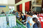 Cổ phiếu của Novaland được vào danh mục MVIS Vietnam Index