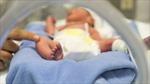 Chẩn đoán bệnh ở trẻ sinh non qua hơi thở