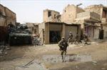Các lực lượng Iraq tiếp tục giành thắng lợi tại Tây Mosul