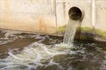 Nhiều chất dinh dưỡng, chất khoáng trong nước thải đang bị lãng phí