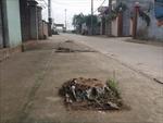 Sẽ kiểm điểm trách nhiệm lãnh đạo xã cho chặt 70 cây xanh