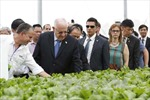 Tổng thống Israel và Phu nhân thăm Dự án Nông nghiệp ứng dụng công nghệ cao VinEco Tam Đảo