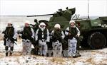 IS nhận thực hiện vụ tấn công quân đội Nga ở Chechnya