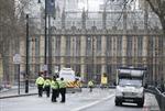 Chưa rõ động cơ của kẻ tẩn công bên ngoài tòa nhà Quốc hội Anh