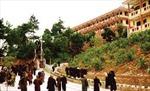 Lần đầu tiên, các tăng ni, kiều bào tiêu biểu Thái Lan thăm, làm việc tại Việt Nam