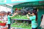 Hoàn thiện thể chế hướng tới nền nông nghiệp bền vững, có trách nhiệm