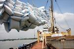 Xuất khẩu gạo giảm mạnh, Trung Quốc đứng đầu về nhập khẩu gạo Việt Nam