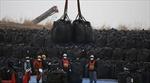 Nhật Bản sẽ tái sử dụng đất nhiễm phóng xạ như thế nào?