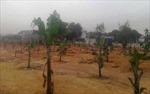 Xâm lấn đất nông nghiệp diễn biến phức tạp