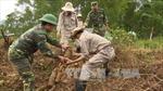 Đoàn Dự án Cây hòa bình Việt Nam tìm hiểu đất nước, con người Việt Nam