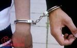 Khởi tố, bắt tạm giam hai bị can về hành vi thiếu trách nhiệm trong quản lý, bảo vệ rừng