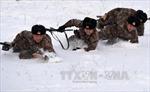 Trung Quốc cắt giảm số lượng binh sĩ theo lộ trình