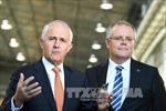 Australia để ngỏ khả năng cùng Mỹ tấn công Syria