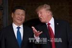 Ông Tập Cận Bình: Hợp tác là lựa chọn đúng đắn nhất trong quan hệ Trung-Mỹ