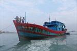 Tàu đánh cá Việt Nam bị bắt giữ ở Australia