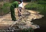Đình chỉ hoạt động 3 tháng với công ty xả thải ra sông Âm làm cá chết hàng loạt