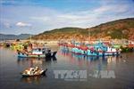 Nhiều chủ tàu vỏ thép ở Bình Định đứng trước nguy cơ bị phá sản