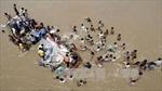 Xe buýt lao xuống sông ở Ấn Độ, 43 người chết